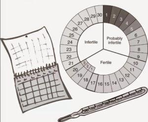 Естественная контрацепция по календарному методу