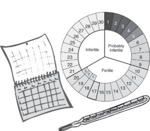 Календарный метод предохранения