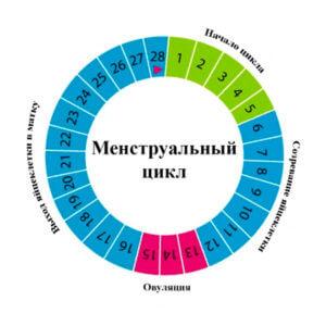 Влияние свечей Патентекс Овал на менструальный цикл