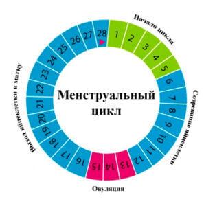 Влияние свечей на менструальный цикл