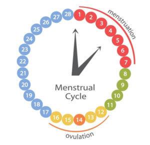 Менструальный цикл при установки вмс